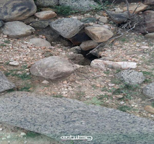 بالصور -قُرى شمال ثلوث المنظر مقابر مفتوحة وبلدية بارق تتجاهل المُطالبات