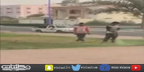 فيديو مواطن يوثق رش تربة حدائق المجاردة باللون الأخضر