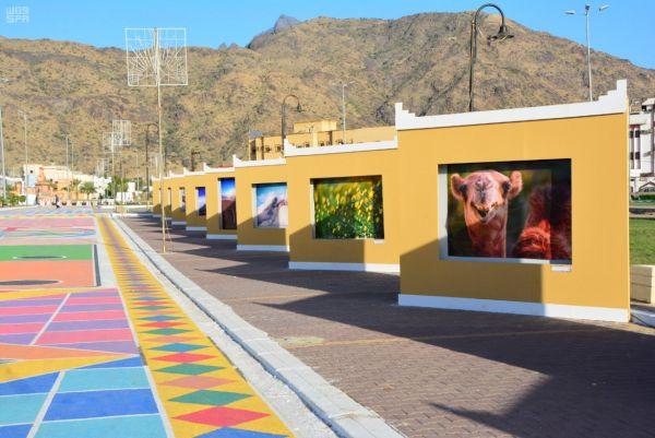 اللجنة الفرعية للتنمية السياحية بالمجاردة تدعو للمشاركة في متحف شارع الفن