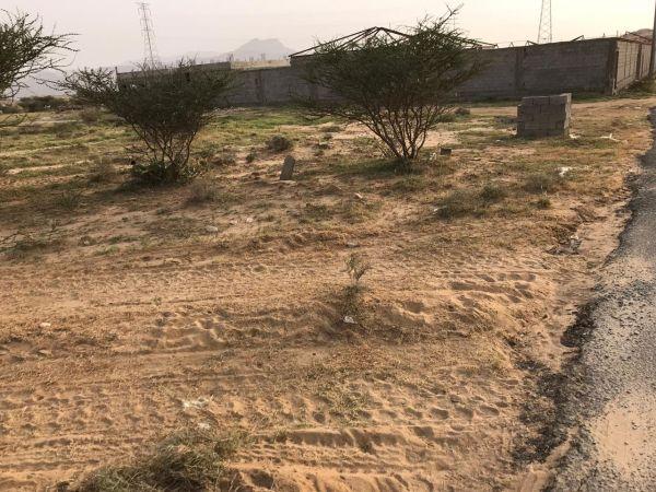 بالصور - مقابر أموات غرب ثلوث المنظر تُمتهن .. ومُطالبات بالتدخل