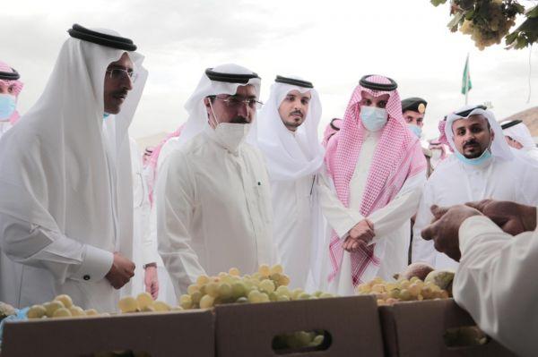 أمين عسير يزور مهرجان العنب بالماوين