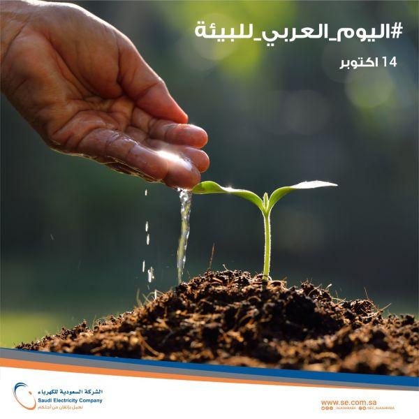 الكهرباء نسعى لتحقيق الريادة في حماية البيئة بالاستخدام الأمثل للموارد والتدوير وتقليل النفايات
