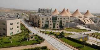 """""""اقتصاد"""" جامعة الملك خالد بمحايل يختتم مبادرته النوعية لرفع الوعي بأهمية الاستدامة البيئية"""