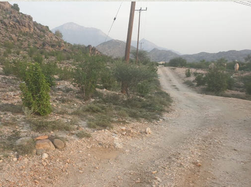 #بارق :بالصور - أهالي وادي الخير لرئيس المركز مقابر أموات تنظر حلول الأحياء