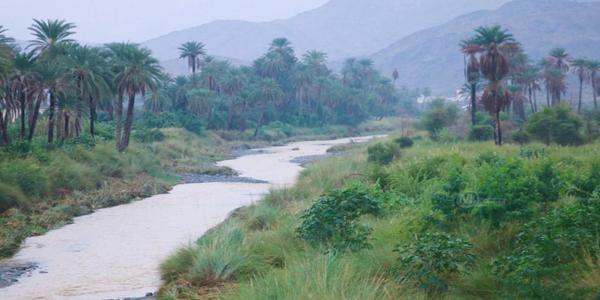 شاهد- وادي قنونا طبيعة ساحرة وخدمات مفقودة .