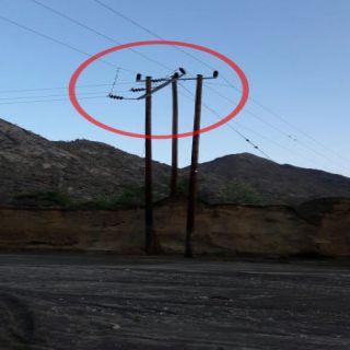 """بالصور - بعض قرى ثلوث المنظر """"72""""ساعة دون كهرباء وكهرباء عسير توضح"""