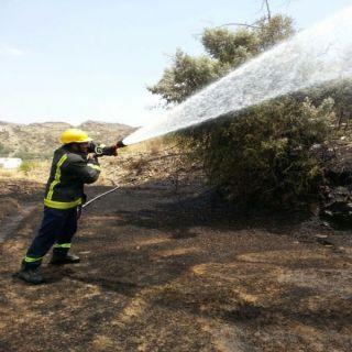 بالصور - مدني #الباحة يُسيطر على حريق إحدى الغابات بمحافظة #المندق