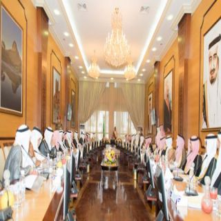 أمير #الباحة يحث الجهات الحكومية على سرعة استكمال المشاريع القائمة