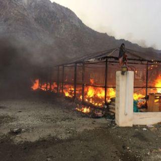 مدني #الباحة يُخمد حريق بيت شعر بفناء منزل بمركز المخطط التابع للمخواة