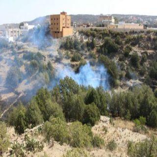 مدني الباحة يُصيطر على حريق حشائش واشجار بقرية العيص بمُحافظة المندق