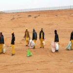 """""""القصيم"""" فرق من امانة القصيم يجوب الصحراء لتنضيف المنتزهات البرية"""