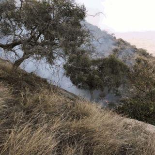 بالصور - الدفاع المدني تم السيطرة على 90% من حريق جبل أثرب