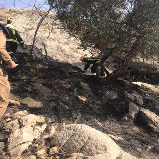 العاصمي مدني #بارق يُعلن السيطرة على حريق جبل أثرب
