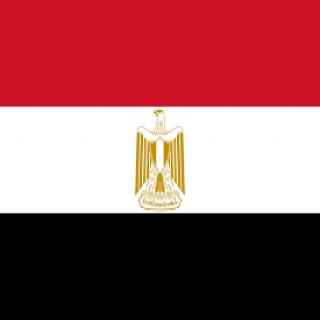 مصر تدين الحادث الإرهابي الذي تعرضت له دورية أمن بحي المسورة في القطيف