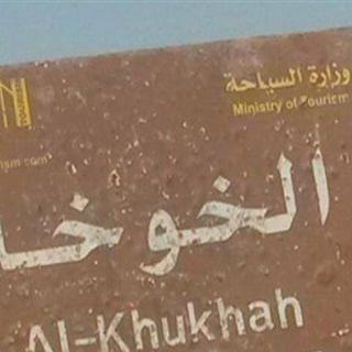 """مصدر عسكري يمني قوات الشرعية تُسيطر على مدينة """"الخوخة"""" الساحلية"""