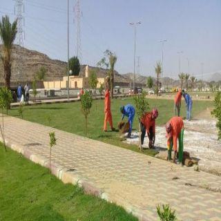 بالصور بلدية #بارق تواصل زراعة النجيل بحديقة جبال