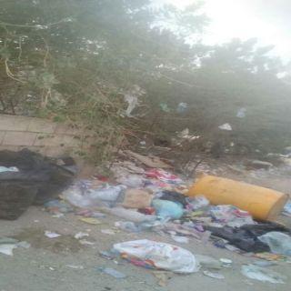 بالصور - تراكم النفايات بقرى ثلوث المنظر يُثير إستياء الأهالي