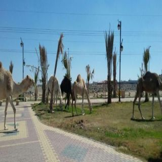 بلدية #خميس_مشيط تكشف عن أسباب تواجد أبل في إحدى حدائق المُحافظة