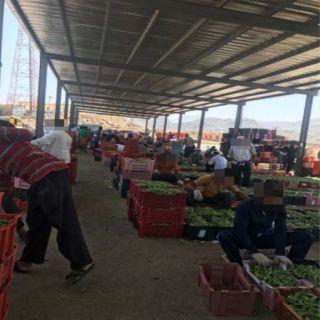 """وطنيات ترصد عمالة تًسيطر على سوق خضار #محايل و""""الفاهمي"""" ينفي"""
