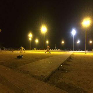 بالصور بلدية #بارق تُعيد التيار الكهربائي لحديقة ثلوث المنظر