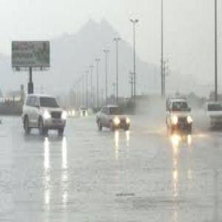 امطار رعدية على مُحافظة #بارق والدفاع المدني يُحذر