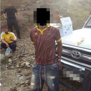القبض على عدد من المخالفين ومروجي المخدرات بمركز الحبيل برجال المع