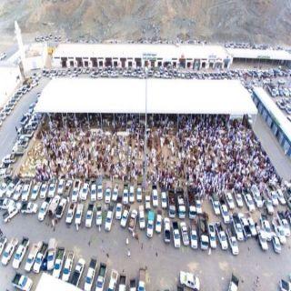 إقبال كبير على سوق مواشي #محايل والبلدية ترفع جاهزية المسلخ