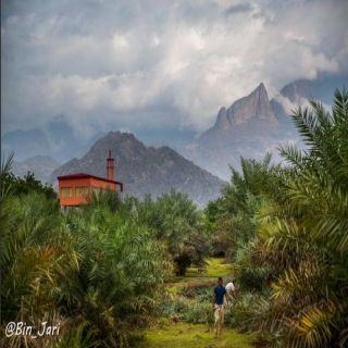 """عدسة المُصور """"بن جاري"""" توثق جمال طبيعة وادي الخير شمال ثلوث المنظر"""