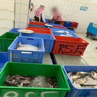 #أمانة_عسير تضبط اكثر من 200 كيلو للأسماك فاسدة
