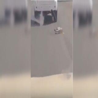شرطة #جازان توقع بأربعيني ظهر في مقطع فيديو يجر كلباً بمركبته