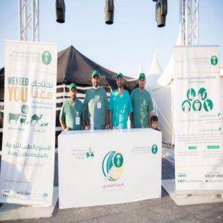 عيادات بيطرية متنقلة للإشراف على مهرجان «أصول الأغنام المحلية» ببريدة