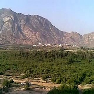 غابة مورك في قُرى وادي الخير بثلوث المنظر طبيعة سياحية منسية