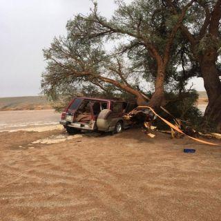 مواطن في القصيم ينجو من الموت بإعجوبة بعدان سقطت شجرة على مركبته
