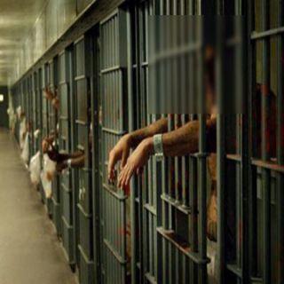 سجون #تركيا مقابر للمظلومين وإحصائيات مُريبة للوفيات