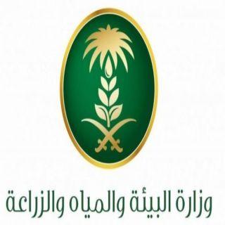 مياه #الباحة تدعو المشتركين إلى تحديث بياناتهم خلال الأسبوع القادم