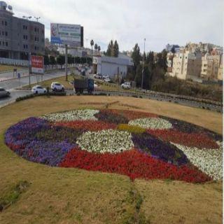#أمانة_عسير : تزرع أكثر من 6 ملايين زهرة موسميةمتعددة الألوان و 300 الف شجيرة