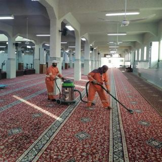 أكثر 400 جامع ومسجد بـ #البكيرية تكتمل جاهزيتها لاستقبال المصلين.. غداً الأحد