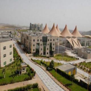 أسماء الفائزين بمسابقة أفضل ابتكار لإيجاد حلول إبداعية بـ #جامعة_الملك_خالد