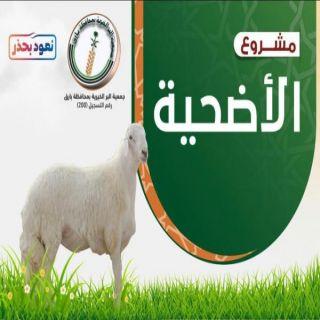 البر ببارق تطلق مشروع الأضحية لعام 1441 وتبث فرحة العيد لـ 28 أسرة