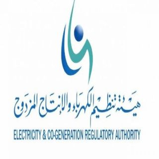 هيئة تنظيم الكهرباء إذا تأخر حل الشكوى عن 15 يوم عمل ..تعويضك مضمون