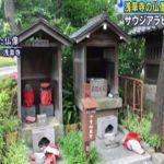 عالمية - سفارة المملكة لدى اليابان تتابع قضية السعودي المتهم بتحطيم تماثيل معبد في طوكيو