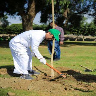 #أمانة_عسير تقيم مبادرةً لزراعة الأشجار احتفاءً بـ #اليوم_الوطني_90