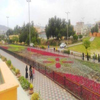 #أمانة_عسير تُزيّن حدائق وميادين أبها بأكثر من مليون زهرة موسمية