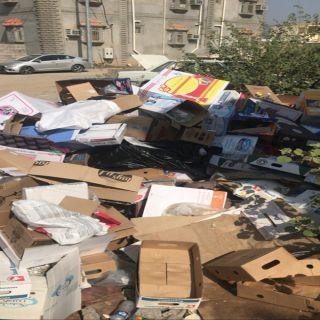 بالصور والفيديو -تراكم النفايات في ثلوث المنظر خطر يُهدد الصحة العامة