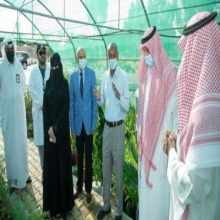 """رئيس #جامعة_الملك_خالد يطلع على أعمال التجربة الحقلية """"تحسين نمو شتلات العرعر"""""""