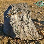 مواطن برغوة عسير يعثر على حجر غريب مطبوع عليه صور ونقوش