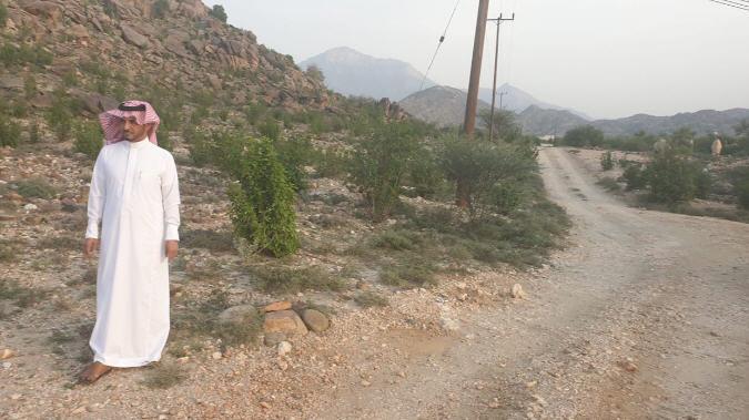 رئيس مركز ثلوث المنظر إبراهيم الشهري اثناء وقوفه على إحدى المقابر
