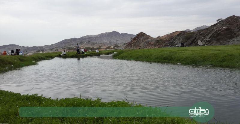 وادي البرداني بمحافظة بارق
